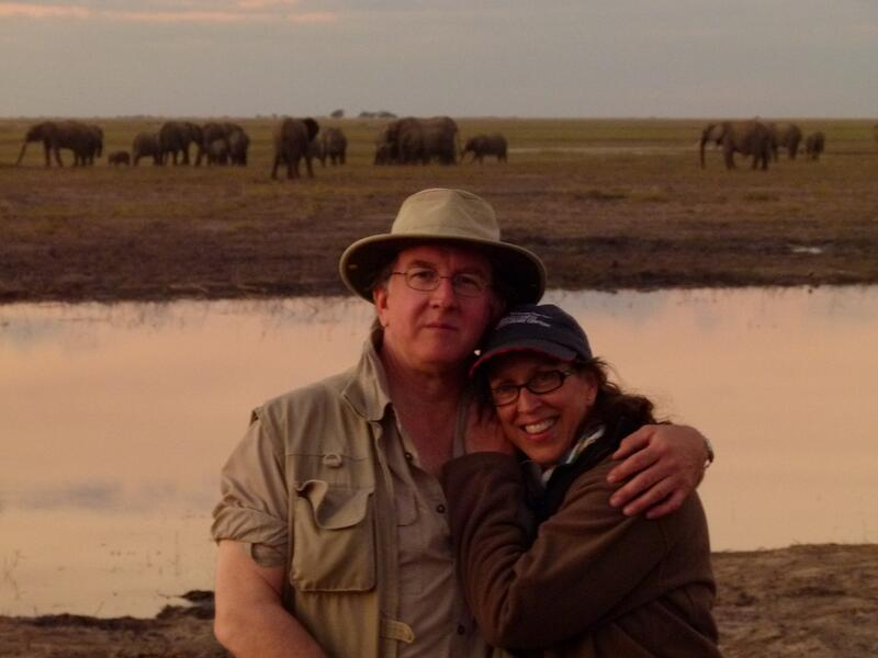 Condo ship owners on safari in Africa with herd of elephants