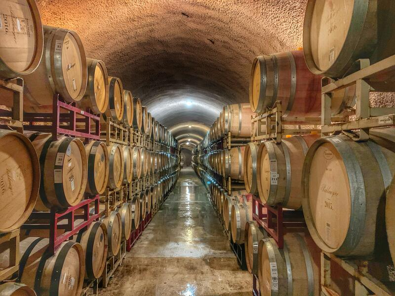 Barrels of the best red wines stacked in a vineyard wine cellar