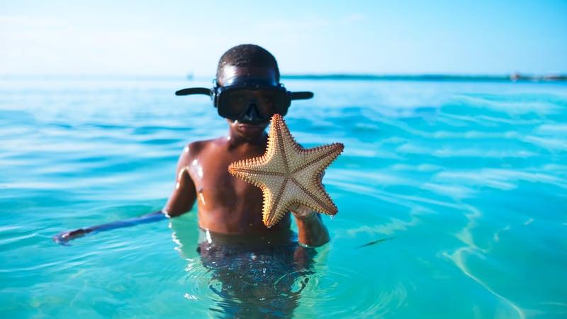 Worldschooling Caribbean Sea