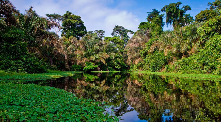 https://cdn2.hubspot.net/hubfs/5873592/itinerary_expedition/AmazonRivercruise1_Brazil_Itinerary_Main.jpg