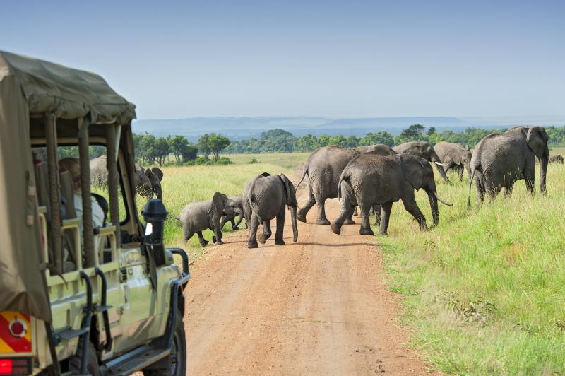 https://cdn2.hubspot.net/hubfs/5873592/itinerary_expedition/Tanzania1_Itinerary_Main.jpg